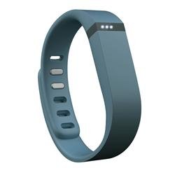 Fitbit Flex Wireless Activity & Sleep Wristband Slate FB401SL