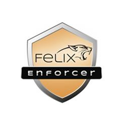 Felix Enforcer Anti-Malware Security OEM 1 User,12 Month